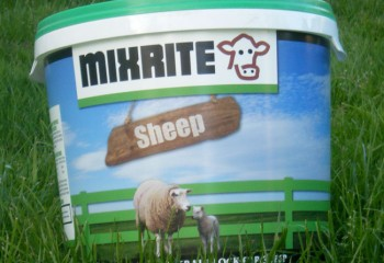 Mixrite Sheep